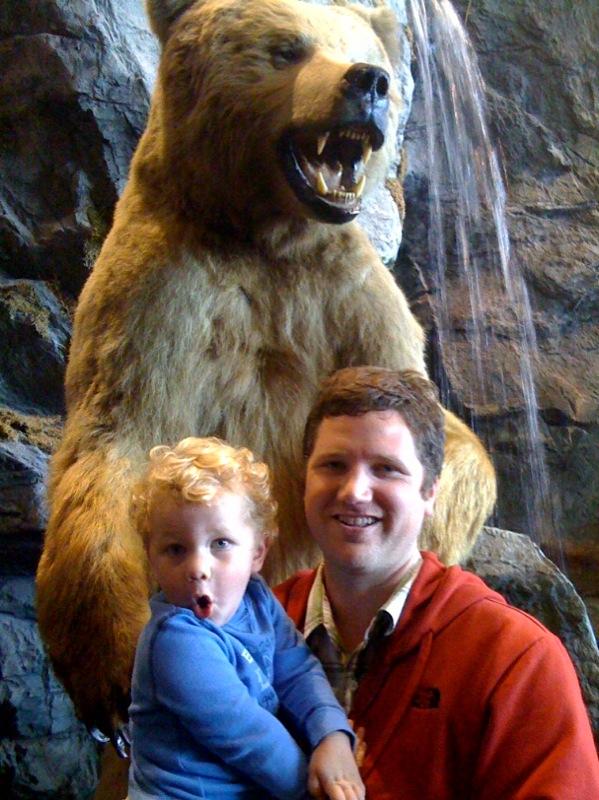 Declan Bear copy